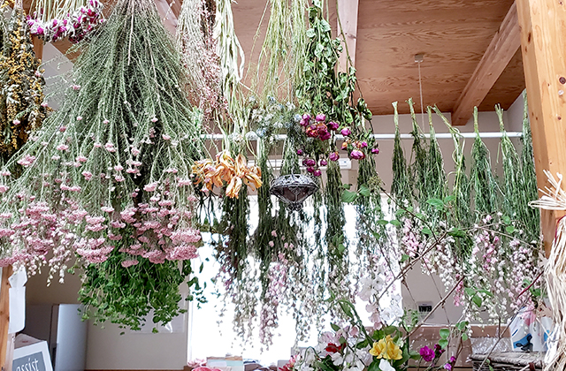 森のAKARI ドライフラワー、多肉植物、花植物寄せ植え、他
