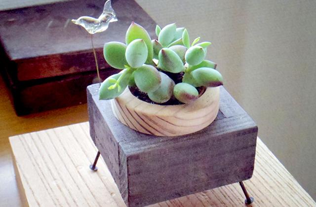 MOC:co 無限に面白い工作室 木・真鍮・軟質ガラス・植物をmixした大人工作